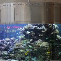 Akvarier